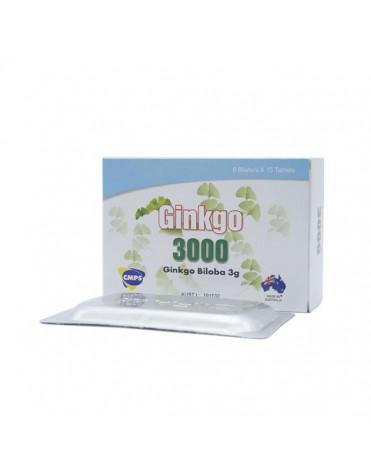 Ginkgo 3000 - Tăng cường tuần hoàn não